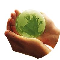COS Environmental Practices