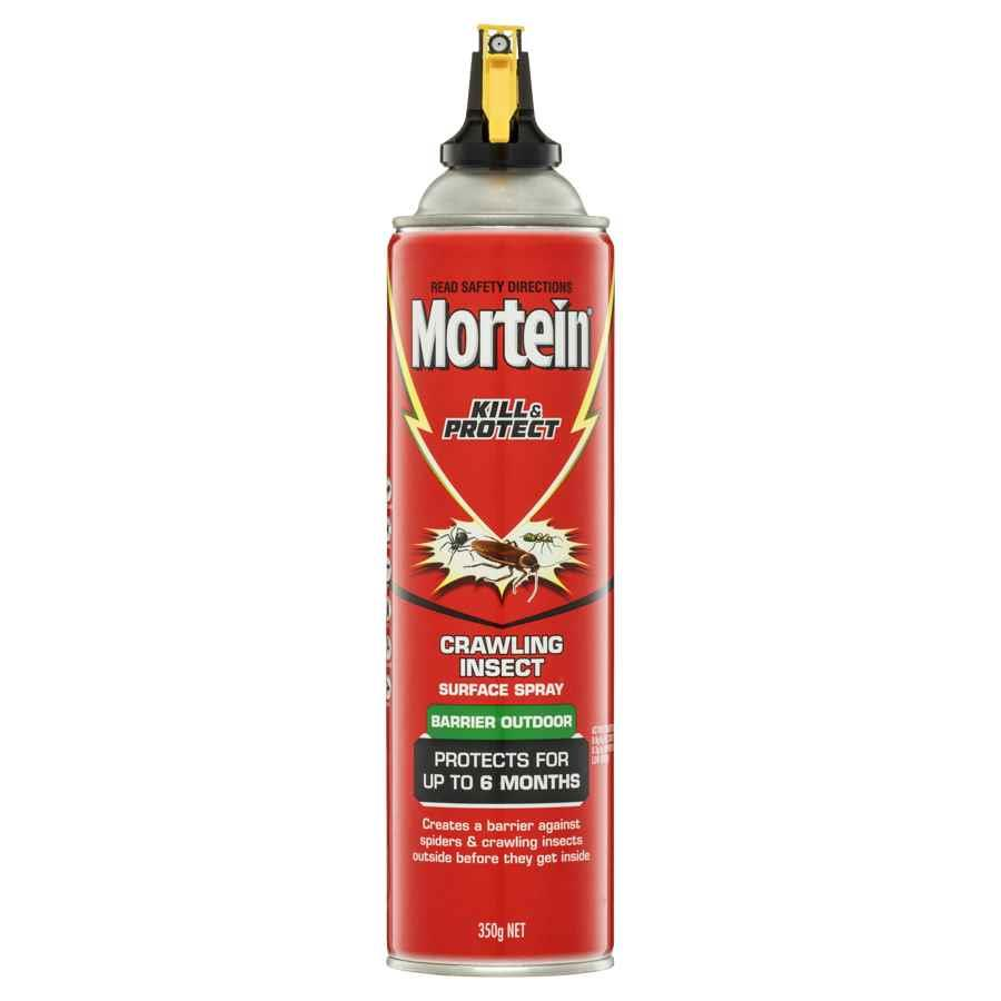 Cos Mortein Kill Amp Protect Insect Spray 350g