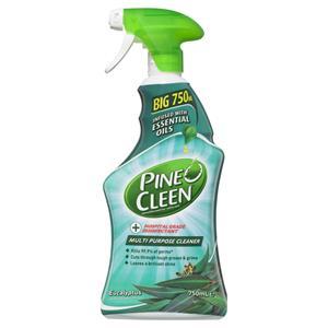 COS Pineocleen Spray Eucalyptus 750ml
